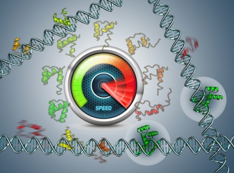 Control of Gene Expression (Professor Victor Muñoz)